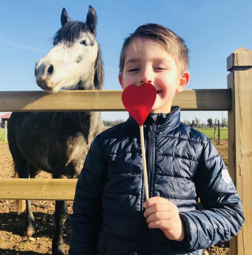 Saint Valentin avec les chevaux byTriple